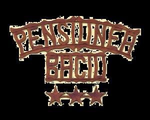 pensiunea-baciu-toplita-logo