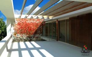 modern_house_var1_arhideck_construct_randare_terasa